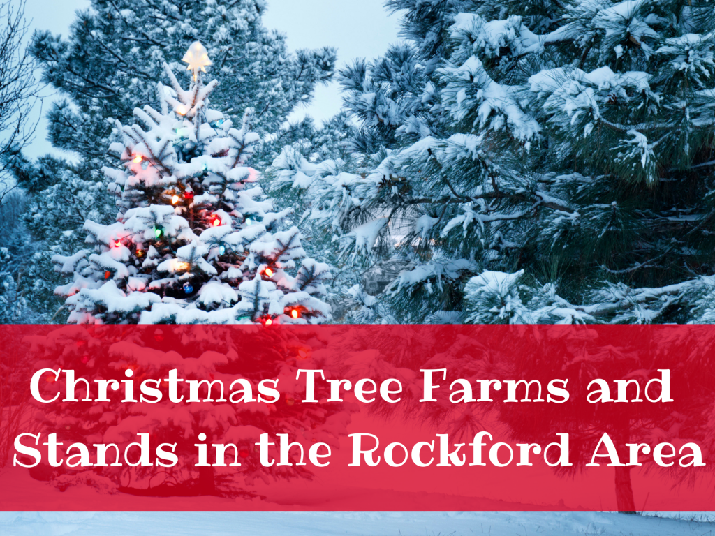 Christmas Tree Farms and Stands in the Rockford Area