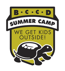 2019 Rockford Area Summer Camp Guide