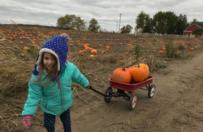 Get Your Pumpkins at These Rockford Area Pumpkin Patches
