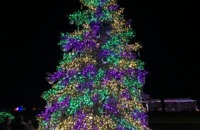 Christmas Lights in the Rockford Area