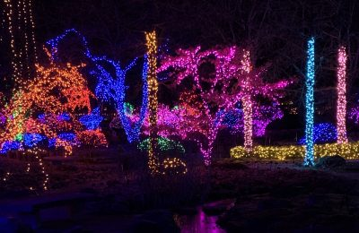 Holiday Light Show at Rotary Gardens