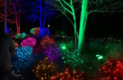 Best Christmas Light Displays in the Rockford Area
